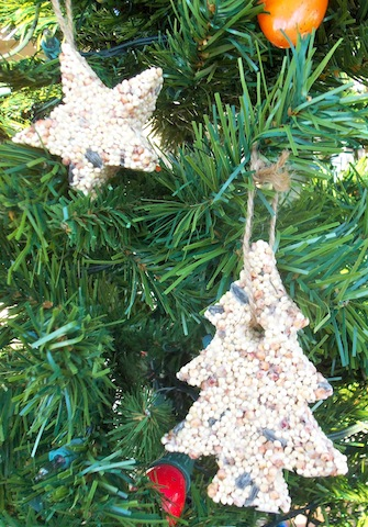 6 fun and inexpensive christmas activities for kids for Bird seed glue recipe