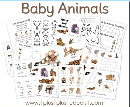 Animals And Their Babies Worksheets For Kindergarten