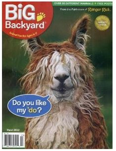 Your Big Backyard magazine cover