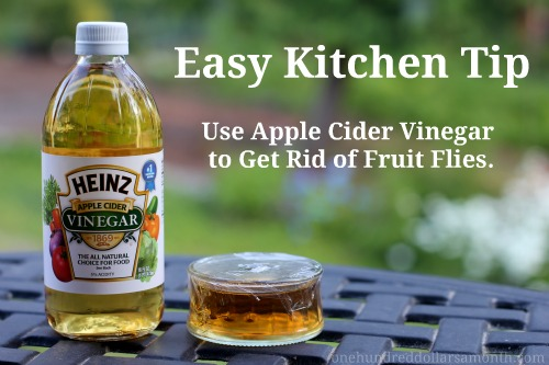 Get rid of fruit flies with vinegar money saving mom - Get rid weeds using vinegar ...