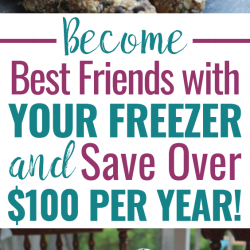 Freezing cooking -- even just freezing leftovers -- can save you over $100 per year!!