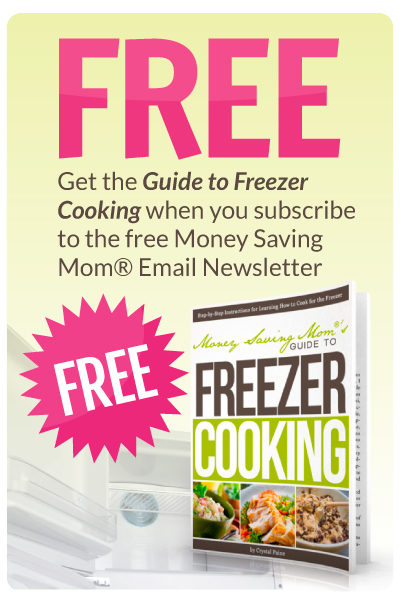 Free Ebook Guide to Freezer Cooking