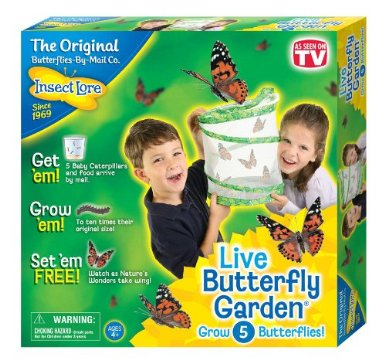 Insect Lore Live Butterfly Garden for $11.93