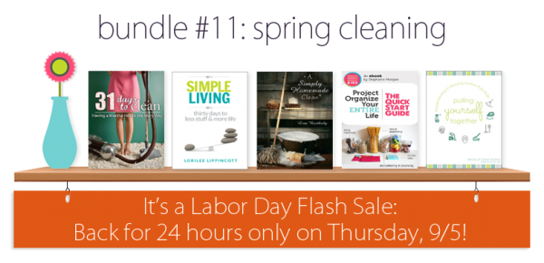 """Get the """"Spring"""" Cleaning ebook bundle for just $7.40 today only!"""