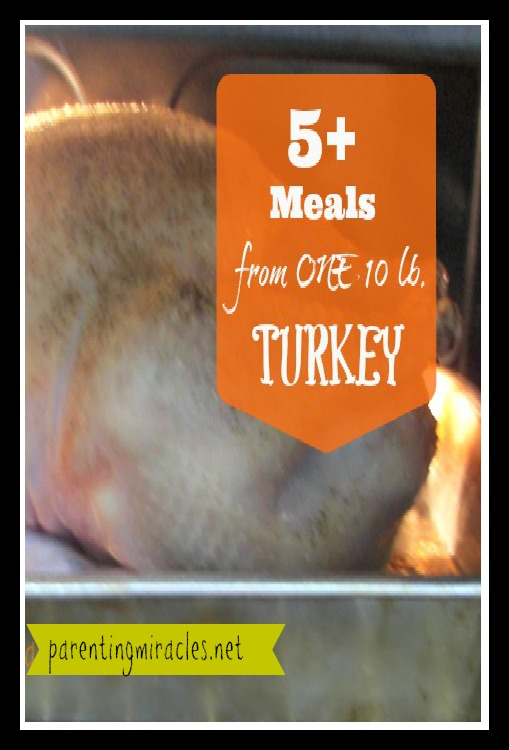 5+-Meals-from-one-10-lb.-Turkey-Pin