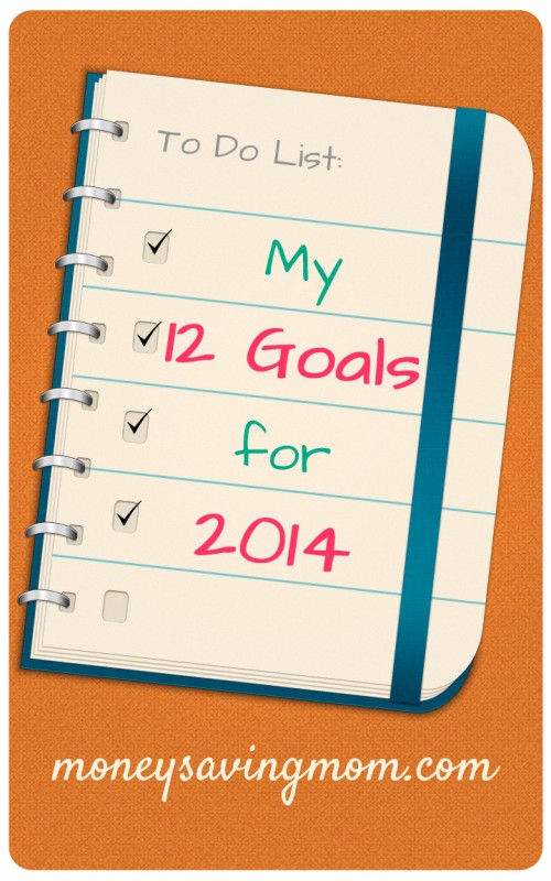 My-12-Goals-for-2014