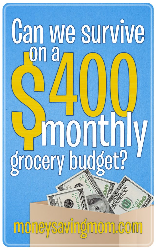 400-Monthly-Grocery-Budget