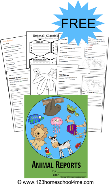 elementary school book report worksheet