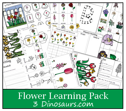 Free printable Flower Learning Pack