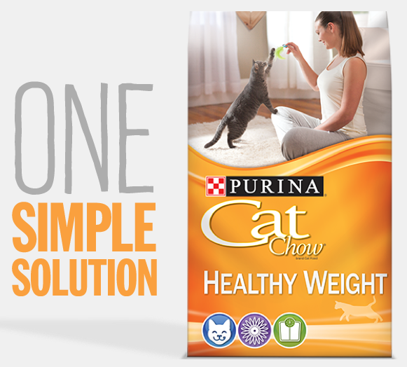 Free Purina Cat Food sample