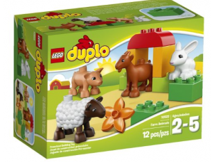 Educational Deals & Freebies Round-Up