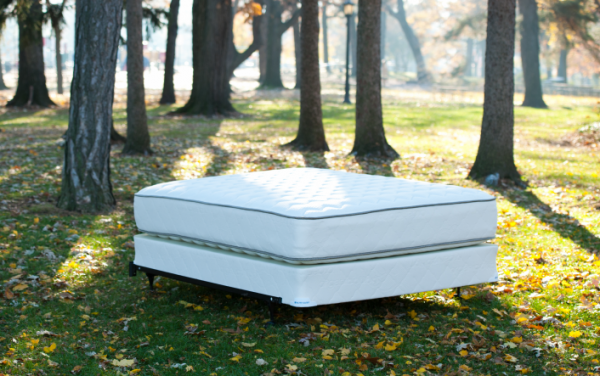 Enter to win a FREE Pure Echo Mattress from My Green