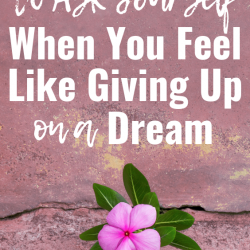 5 Questions to Ask Yourself When You Feel Like Giving Up on a Dream
