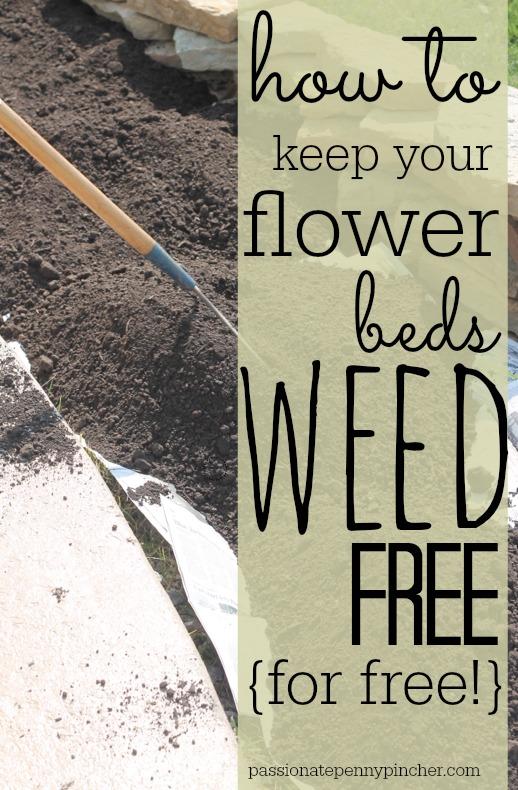 weedfree