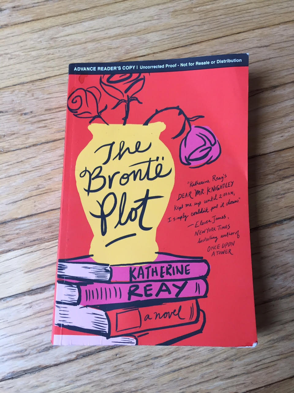 The Bronte Plot ebook