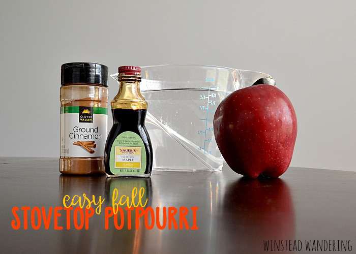 DIY Easy Fall Stovetop Potpourri