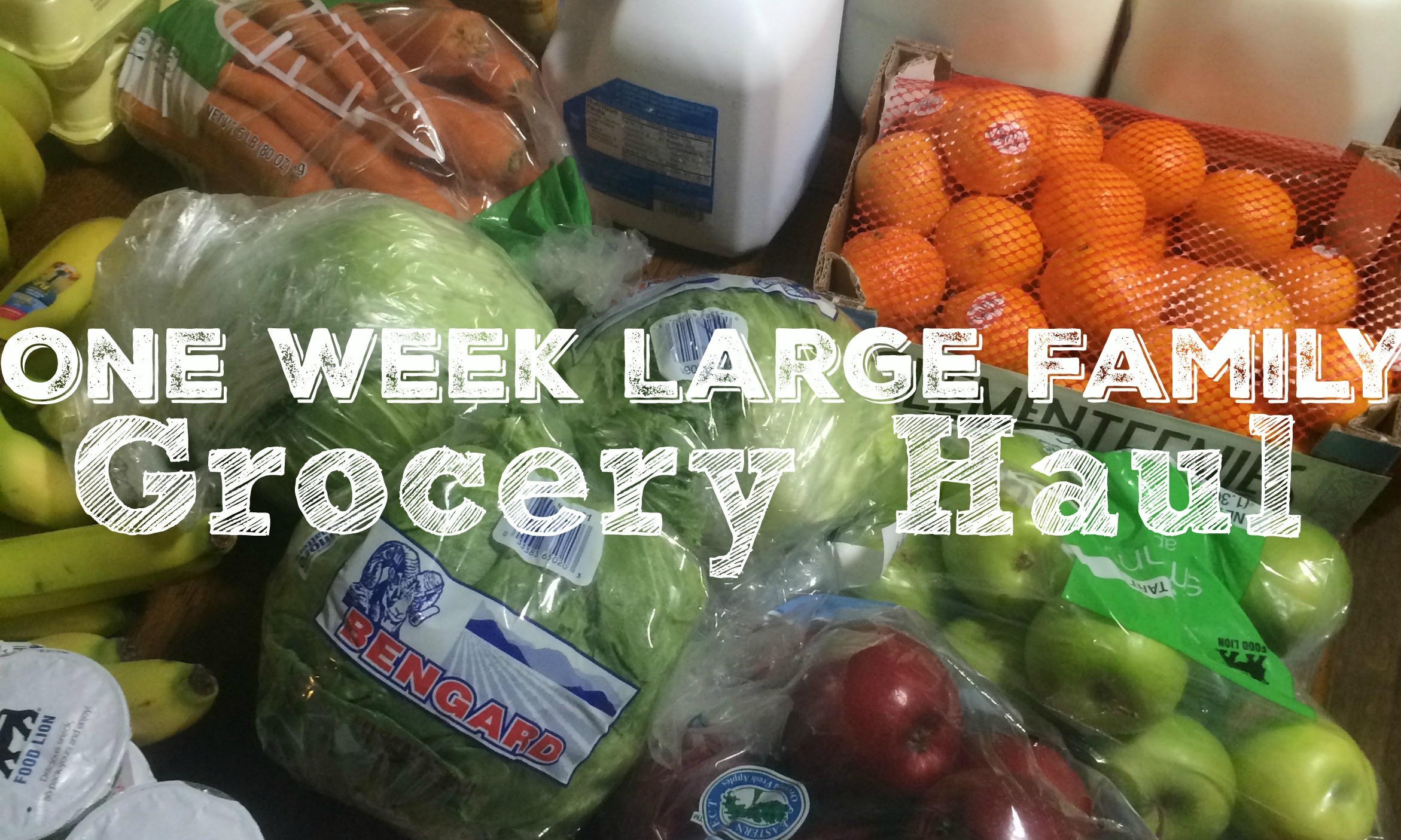 One Week Large Family Grocery Haul