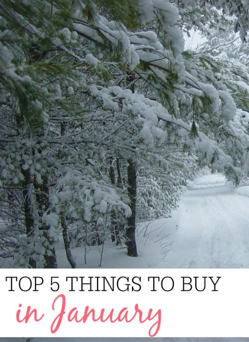 The Top 5 Things to Buy in January