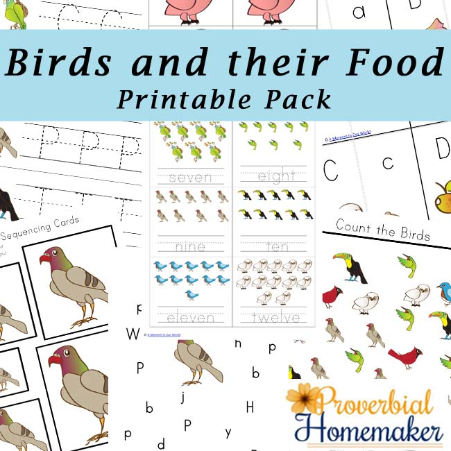 Free Birds and Their Food Printable Pack