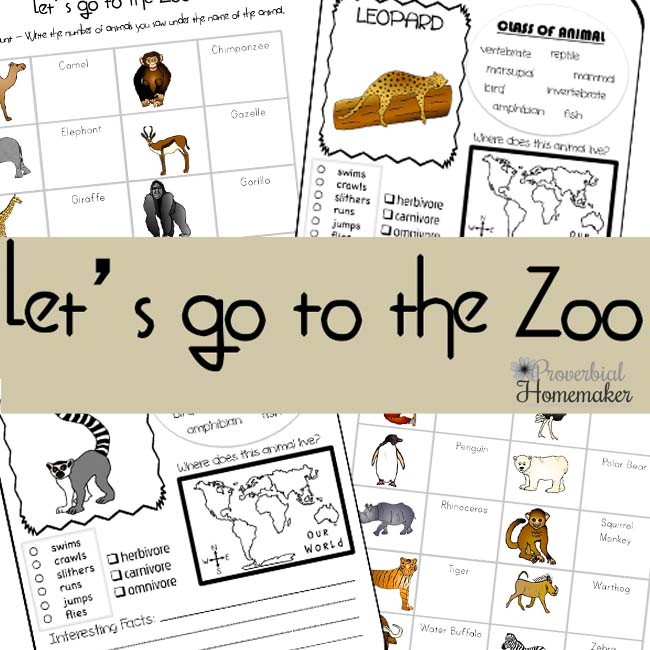 Download a free Let's Go To The Zoo printable pack!