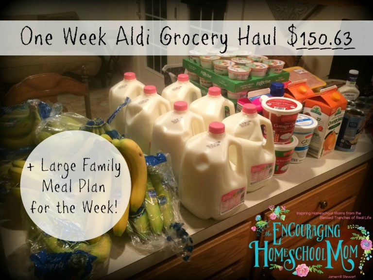 One Week Aldi Grocery Haul for a Family of 9 -- Just $150!