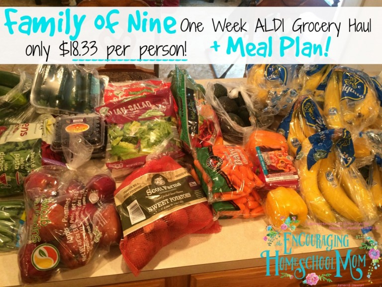 One Week Aldi Grocery Shopping Haul for a Family of 9!
