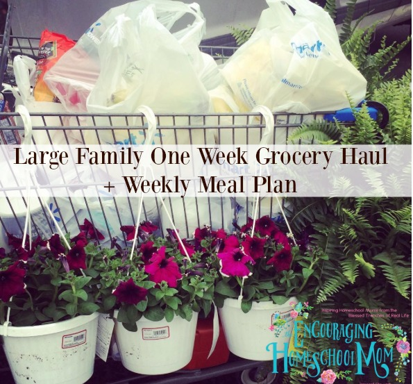 Check Out This One Week Grocery Shopping Haul For A Large Family