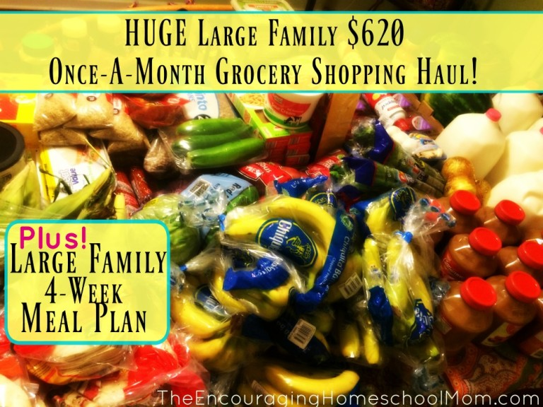 Check out this once-a-month $620 grocery shopping haul for a large family!