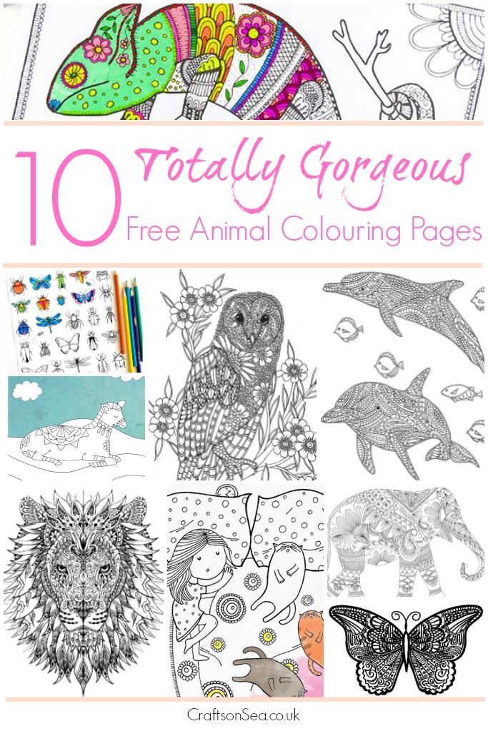 Free Animal Adult Coloring Pages