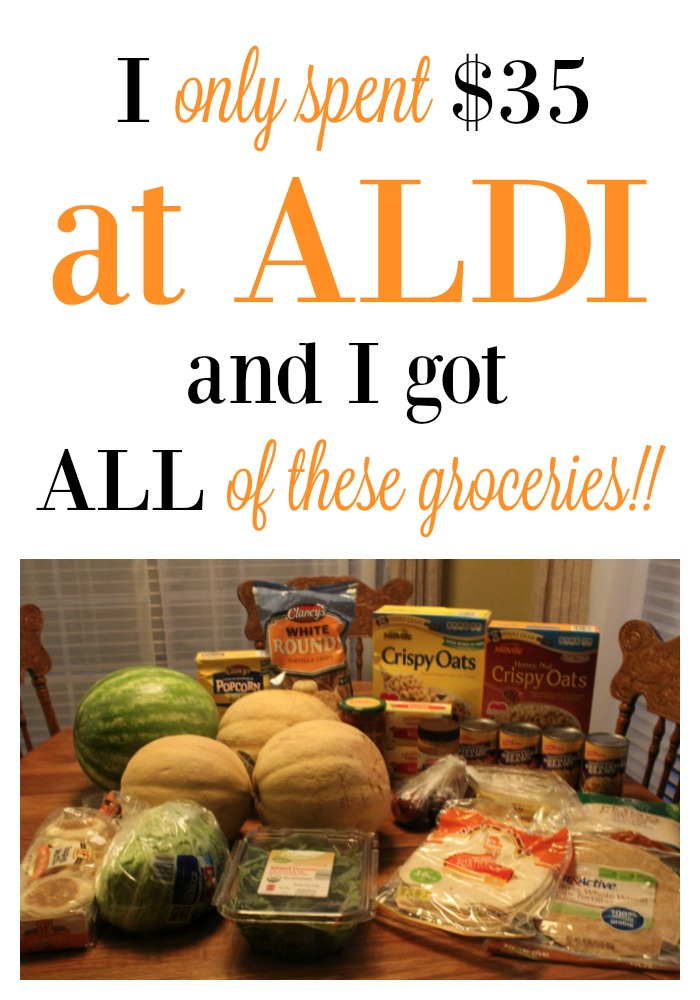 I only spent $35 at Aldi & got all of these groceries!