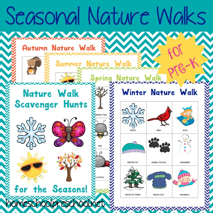 Download a free printable Seasonal Nature Walks preschool pack!