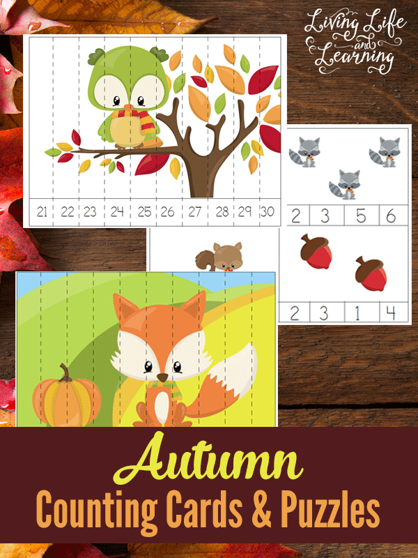 Free Printable Autumn Counting Cards and Puzzles