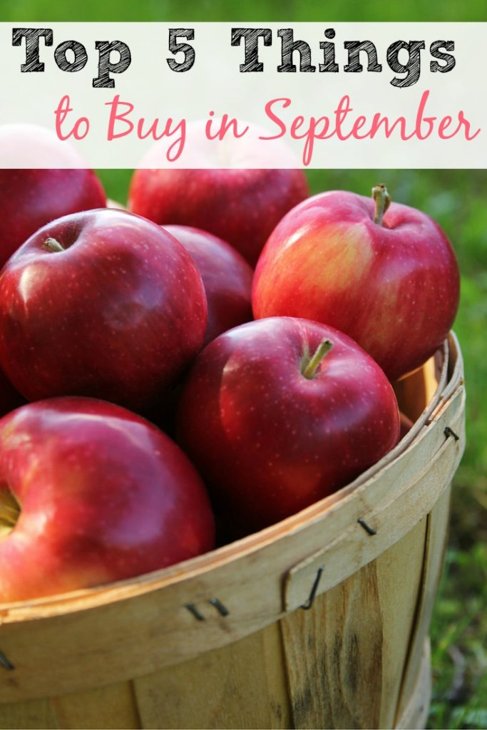 The Top 5 Things to Buy in September!