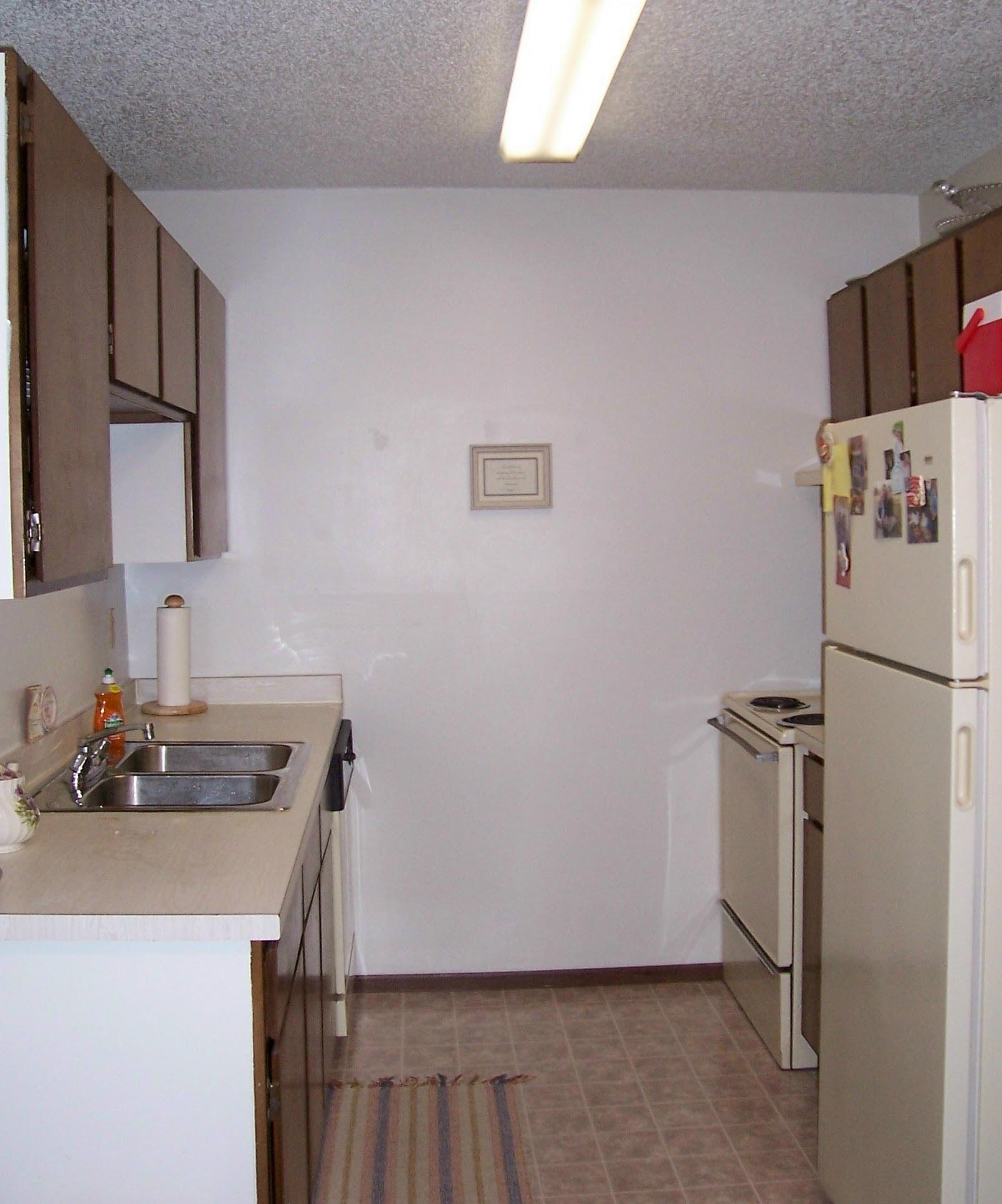 Our Basement Apartment Kitchen