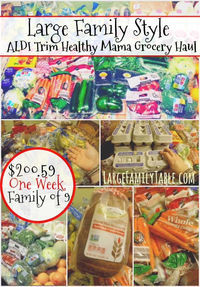 One Week Aldi Grocery Shopping Haul for a Large Family {Trim Healthy Mama Friendly}