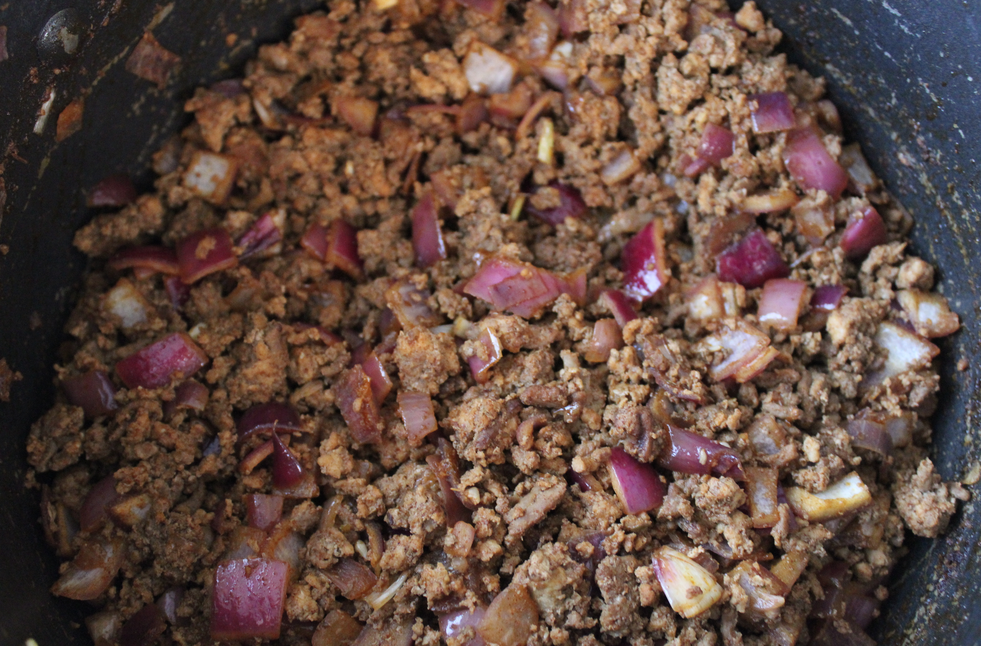 close-up photo of taco meat