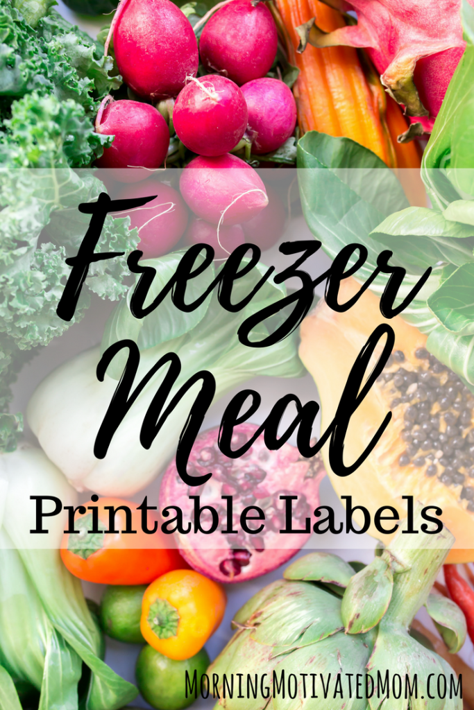 photograph regarding Printable Freezer Labels titled Totally free Printable Freezer Evening meal Labels - Economical Conserving Mother