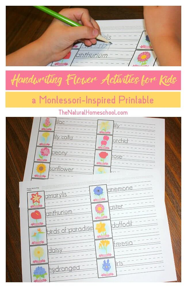 Free Printable Handwriting Flower Activities for Kids