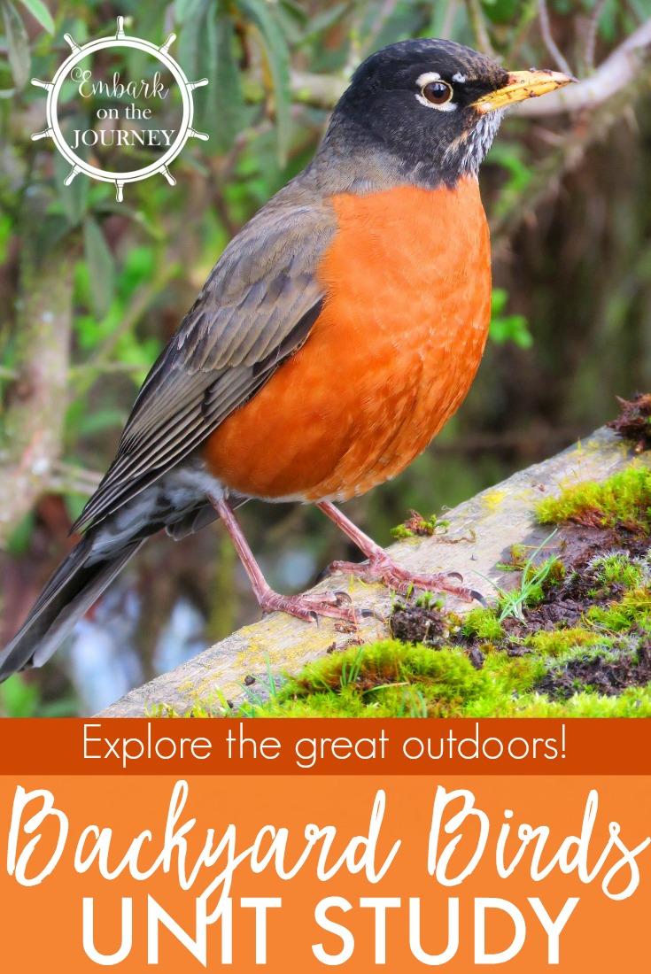 Free Printable Backyard Birds Unit Study for Kids