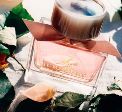 Free Sample of Burberry Blush Parfum