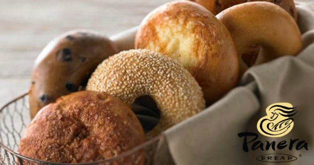 Panera Rewards: Possible Free Bagel Every Day in October!