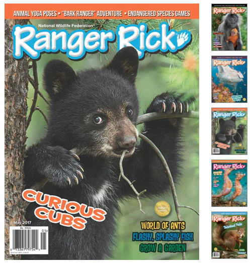 Rare get a ranger rick magazine subscription as low as 10 per right now you can get a one year subscription to ranger rick magazine for only 1199 per year when you use coupon code moneysaving at checkout fandeluxe Image collections