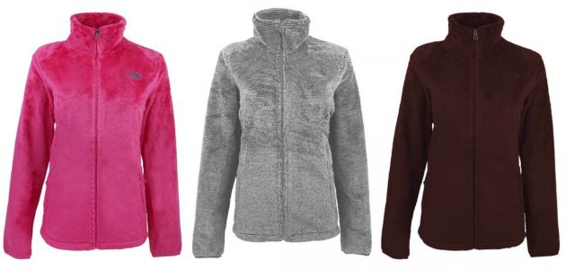Get a Women's North Face Osito 2 Fleece Jacket for only $55 shipped!