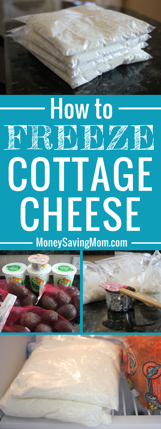 Yep! You can FREEZE cottage cheese!! Here's how!