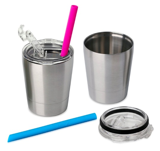 Housavvy Stainless Steel Sippy Cup with Lid and Straw (2 pack) only $11.89!