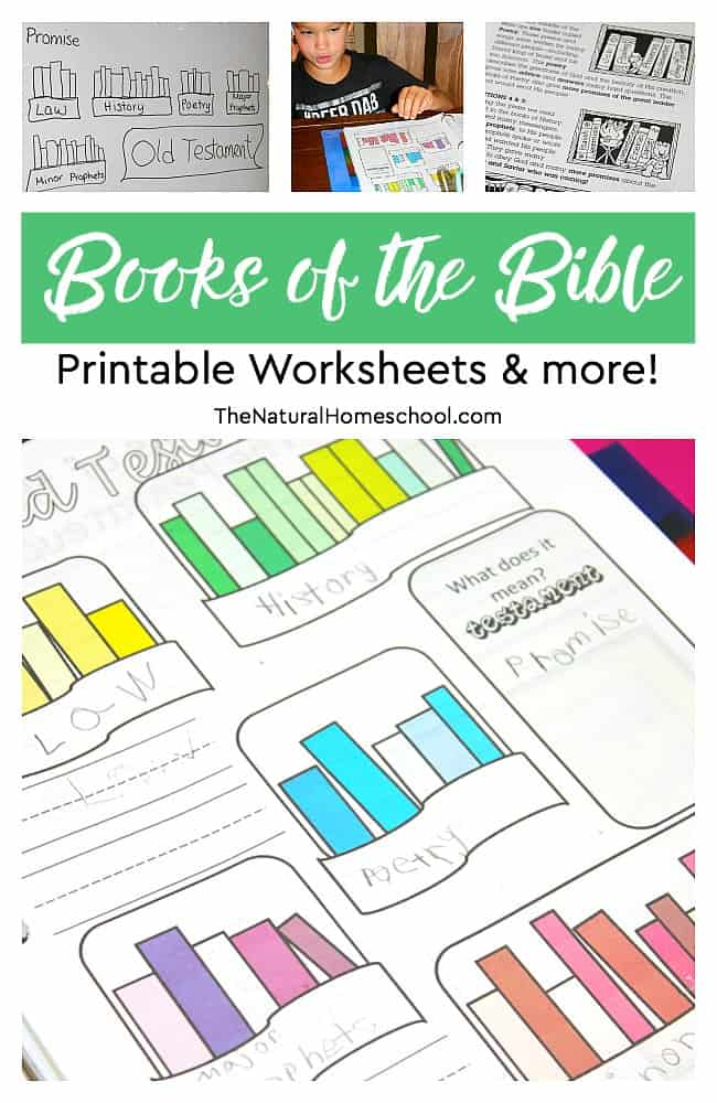 photo about Free Printable Books of the Bible identify Cost-free Printable Textbooks of the Bible Worksheets Financial Conserving