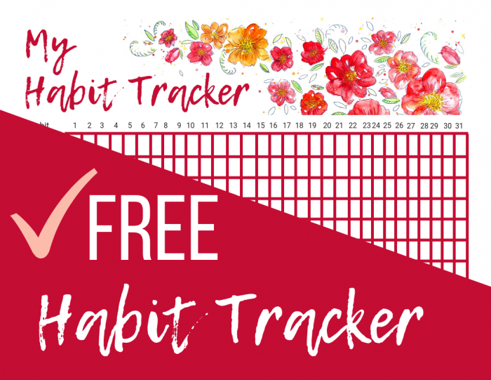 photograph about Daily Habit Tracker Printable titled Free of charge Printable Day by day Behavior Tracker Fiscal Preserving Mother