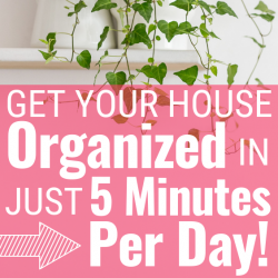 Want to get your house organized this year for good? Try this genius method!!