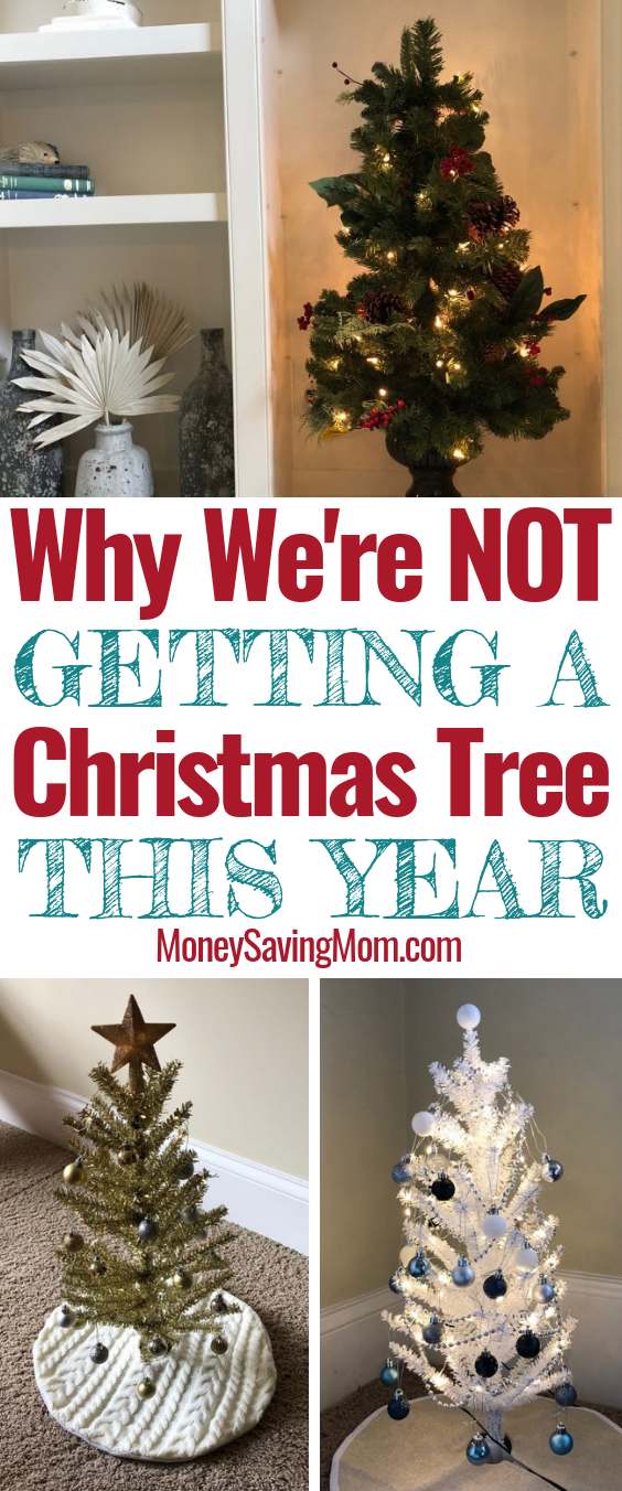 Why We're NOT Getting a Christmas Tree This Year