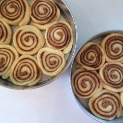 Cinnamon Rolls in pans